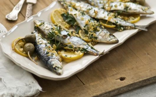 sardine plate  429